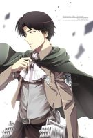 [Shingeki No Kyojin] Levi by PepperMoonFlakes