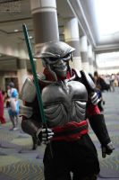 Megacon 2013 32 by CosplayCousins