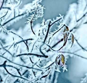 .How cold.. by gin-sui