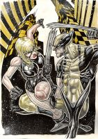 wolverine vs black canary by Vinz-el-Tabanas