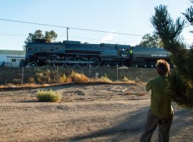 UP 844 steam train 2 by MartinGollery