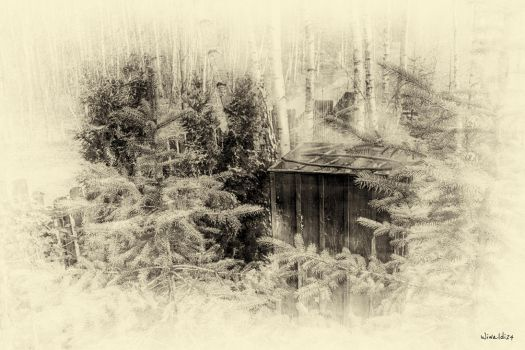 My Smokehouse by wiwaldi24