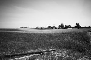 Country Living by Aylanna