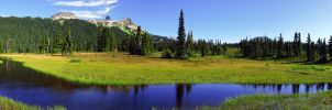 Taylor Meadows and Black Tusk by jasonwilde