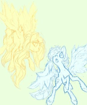 Dashie and Fluttershy(Colorless) by D1V1N3-50UL