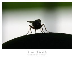 I'm Back by cezars