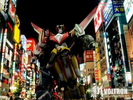 Shin Voltron live by the-newKid