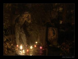 Garden of Souls VI by Tindome