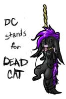 DC Stands for DEAD CAT by Corvidraline