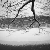 Pond of Villebon and trees in winter by yuushi01