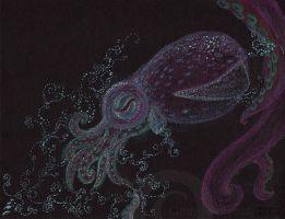 Bobtail Squid by oktopussy
