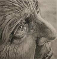 Charcoal Old Man by saucygirl02