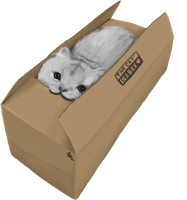 Cat in a Box by Tobsen85