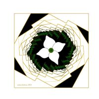 abstract-wallpaper-graphic flower by sonafoitova