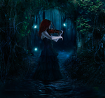 Music of the Night by feainne