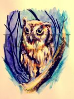 Owl_ by Ravena7
