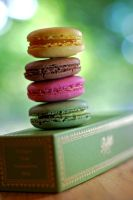Bettys Macaroons by MMortAH