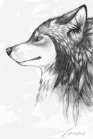 This is a wolf by fnsen