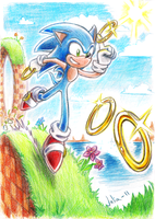 Sonic 20th Anniversary by JuneCat