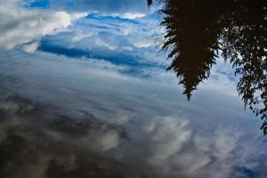 Reflection.. by EaGle1337