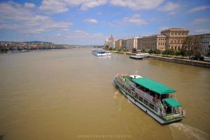 River Through Budapest by drewhoshkiw