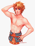 TP Link by whispwill