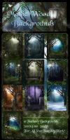 Magic  Wood backgrounds by moonchild-ljilja