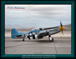 P-51 Mustang Six-Shooter by slowdog294