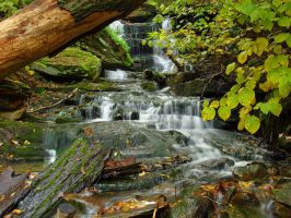 Ricketts Glen State Park 71 by Dracoart-Stock