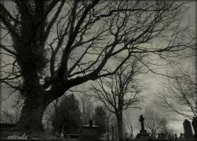 The Cemetery Sleeps by Estruda