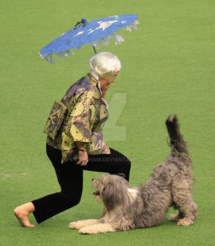 Heather Smith and Gertie 0016 by lwernham