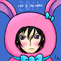 year of the rabbit by rollypops