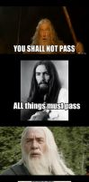 U Mad, Gandalf? by TheOriginalBeatleBug