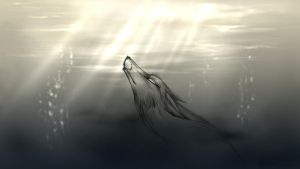 Ghost River. by LadyBD