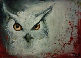 Owl by Scratcho