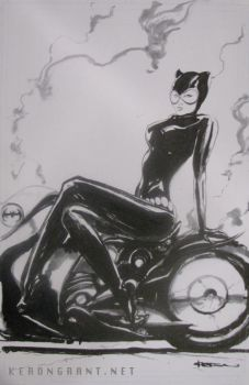 Cat Woman commission by Kerong