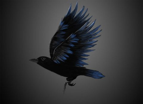 Unchained Crow by Nigsia