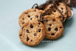 Cookie Necklace #1 by PetitPlat