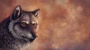 Vulkan: Wolf Portrait by WolfHowl10