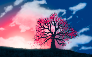 A Tree at Sundown by CloudCircus