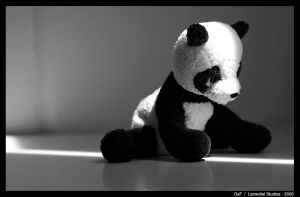 To Live and Die a Panda by Lamediel