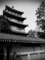 China: Olden Building by TJ-Scorpio88