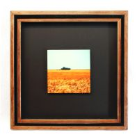 Golden Crop Framed Print Triple Pine Frame by Joe-Lynn-Design