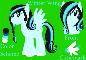 Winter Wing by Featherwolf-Pluma