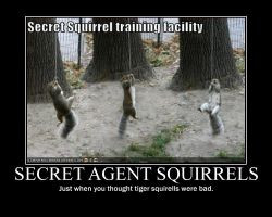 Agent squirrel demotivational by Stickbomber