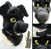 Black Labrador Mask by Tsebresos