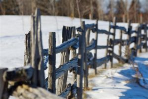fence by jsimon526