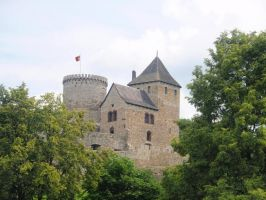 Bedzin castle. by Woolfred