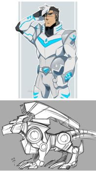 The White Paladin by zillabean