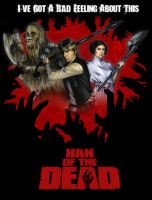 Han Of The Dead 2 by gattadonna